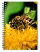 2 Bee Or Not 2 Bee Spiral Notebook