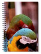 2 Birds Spiral Notebook