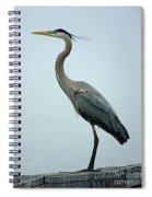 Blue Heron Spiral Notebook