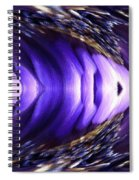 Blue Poppy Fish Abstract Spiral Notebook