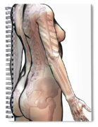 Bones Of The Upper Body Female Spiral Notebook