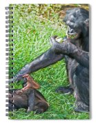 Bonobo Adult And Baby Spiral Notebook
