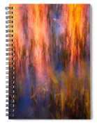 Bridge Of Lions Reflections St Augustine Florida Painted    Spiral Notebook