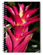 Bromelia Spiral Notebook