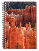 Bryce Canyon Red Rock Spiral Notebook