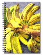 Bunch Of Banana Spiral Notebook
