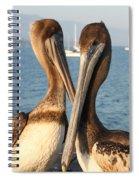 California Pelicans Spiral Notebook