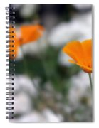 California Poppy Spiral Notebook