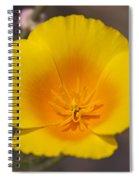 California Sunshine Spiral Notebook