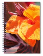 Canna Lily Named Durban Spiral Notebook
