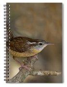 Carolina Wren Spiral Notebook