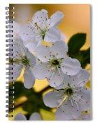 Cherry Flowers Spiral Notebook