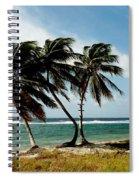 Wind Dancers Spiral Notebook