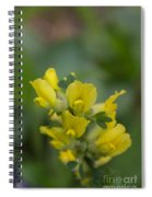 Clustered Broom Spiral Notebook