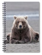Coastal Brown Bears On Salmon Watch Spiral Notebook