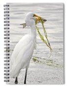 Colossal Catch Spiral Notebook
