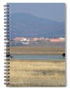 Common Cranes At Gallocanta Lagoon Spiral Notebook
