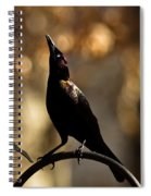 Common Grackle Spiral Notebook