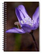 Common Hepatica Spiral Notebook