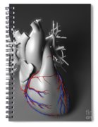 Coronary Vessels Spiral Notebook