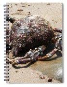 Crab Beach Spiral Notebook