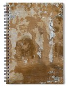 Cracked Stucco Spiral Notebook