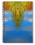 Creation 243 Spiral Notebook