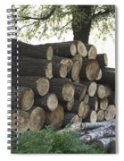 Cut Tree Trunks Piled Up For Further Processing After Logging Spiral Notebook