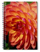 Dahlia Profile Spiral Notebook