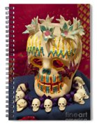 Day Of The Dead Remembrance, Mexico Spiral Notebook