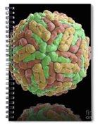 Dengue Virus Spiral Notebook