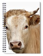 Detail Of Cow Head Spiral Notebook