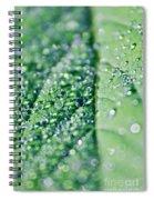 dew Spiral Notebook