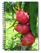 Dragon Fruit Tree Spiral Notebook
