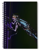 Dragonfly In The Sun Spiral Notebook