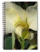 Dwarf Canna Lily Named Ermine Spiral Notebook