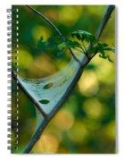 Early Fall Net Spiral Notebook