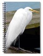 Elegant Egret Spiral Notebook