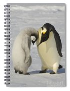 Emperor Penguins Spiral Notebook