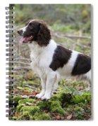 English Springer Spaniel Dog Spiral Notebook