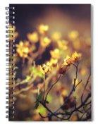 Every Desire Spiral Notebook
