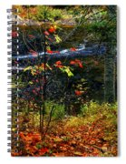Fall Forest And River Spiral Notebook