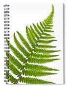 Fern Leaf Spiral Notebook