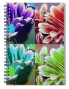 Firmenish Bicolor Pop Art Shades Spiral Notebook
