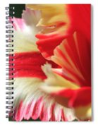 Flaming Parrot Tulip Spiral Notebook