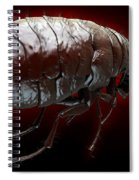 Flea Pulex Irritans Spiral Notebook