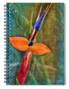 Floral Contentment Spiral Notebook