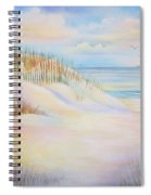 Florida Skies Spiral Notebook