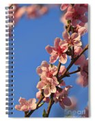 Flowering Peach Tree Spiral Notebook