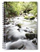 Forest Stream Spiral Notebook